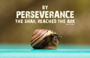 perseverance 001
