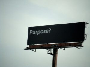 purpose b